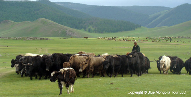 Active Adventure Safari Tour Highlights Mongolia Jeep Travel Image 3